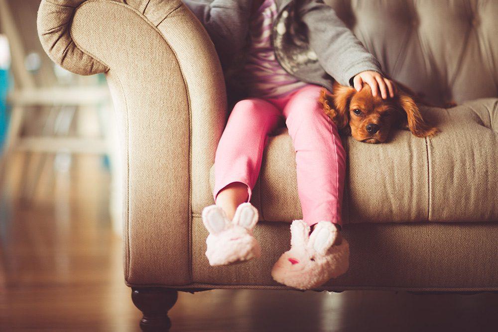 spokojny rudy piesek z dzieckiem na kanapie